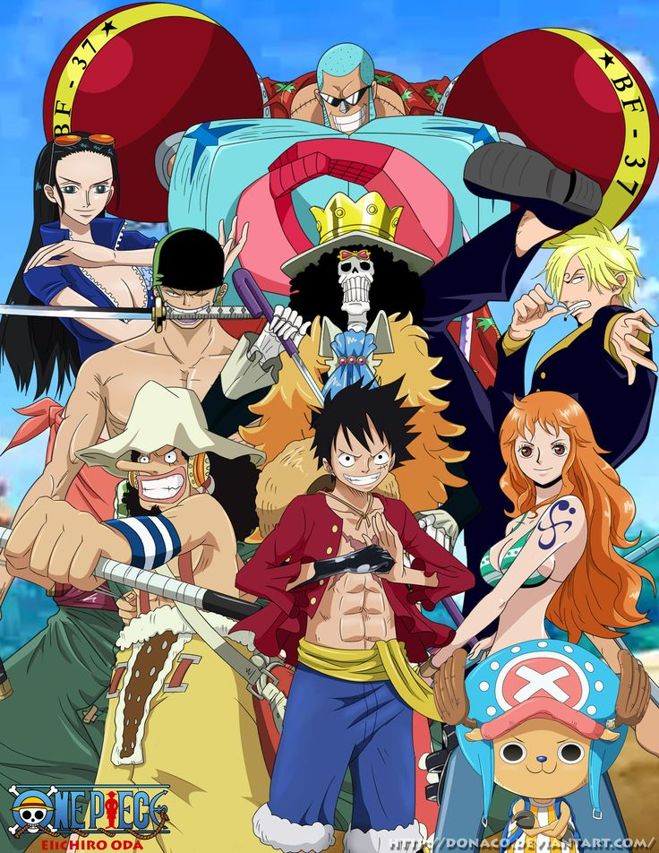 Straw Hat Pirates - We Are!